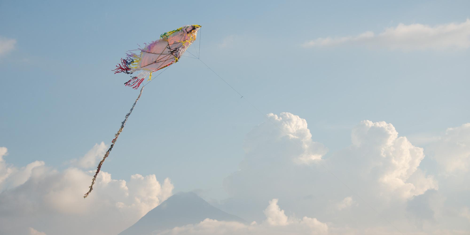 stuart allen the kite table